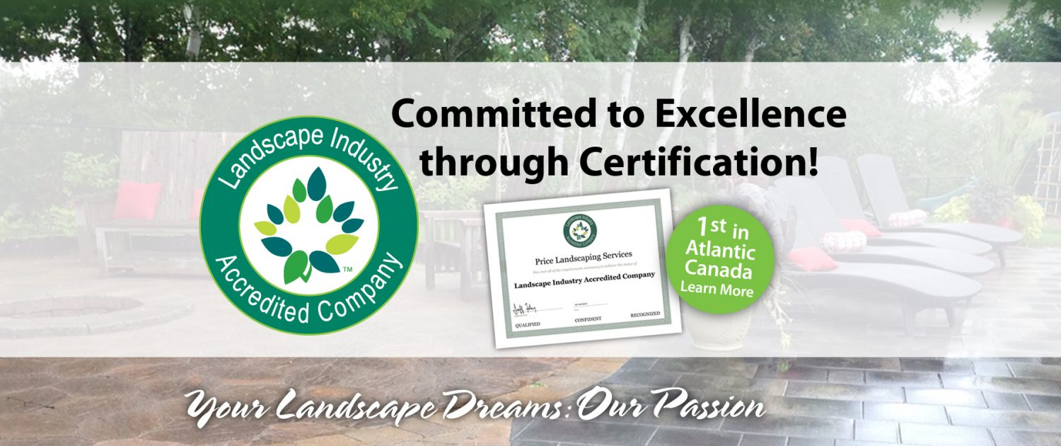 Committed to Excellence through Certification