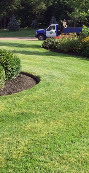 Price Landscaping Healthy Lawn